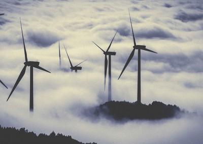 Estudios de impacto ambiental de Parques Eólicos