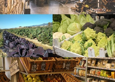 Proyecto agroecológico Huesca